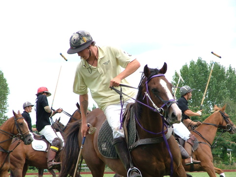 Polo in Cambridge NZ 2010